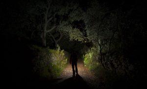 Senderismo Nocturno - Proyecto Ulises