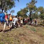 Ruta Camino de Santiago - Proyecto Ulises