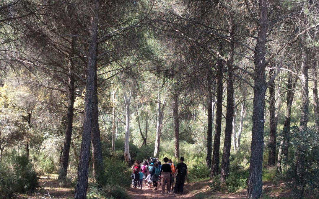 Senderismo en Villafranca